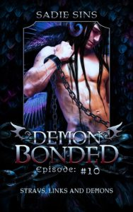 Demon Bonded #10: Strays, Links and Demons cover