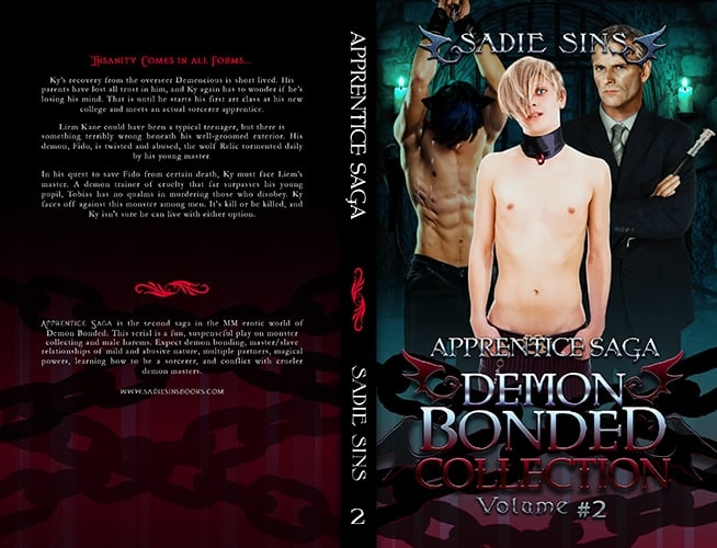 Demon Bonded Collection #2: Apprentice Saga paperback cover