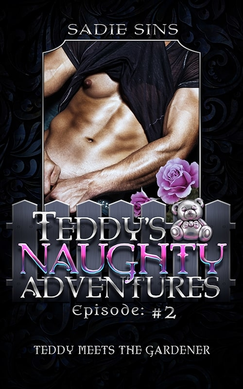 Teddy's Naughty Adventures #2: Teddy Meets the Gardener cover