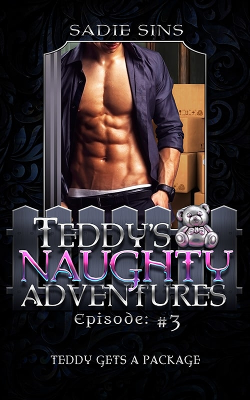Teddy's Naughty Adventures #3: Teddy Gets A Package cover